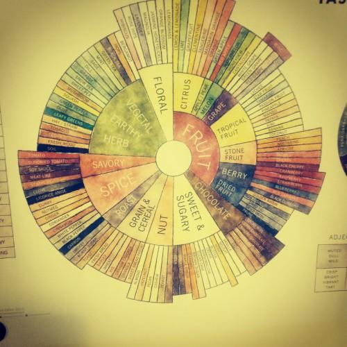 Coffee Taster Flavor Wheel