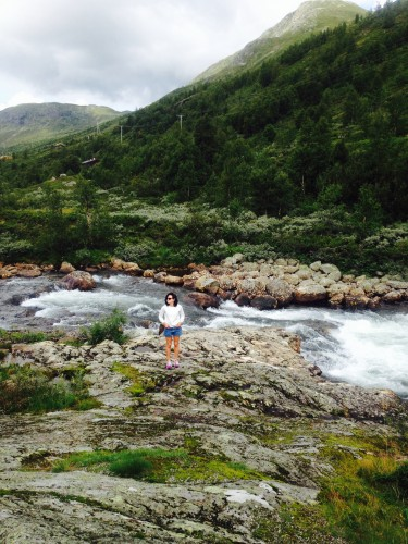 Norway dervynas trip advisor  wild nature
