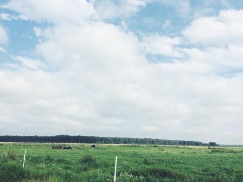 Dervynas kelionės po Lietuva  Žemaitija