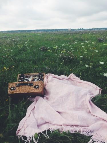 Dervynas kelionės po Lietuva  Žemaitija piknikas