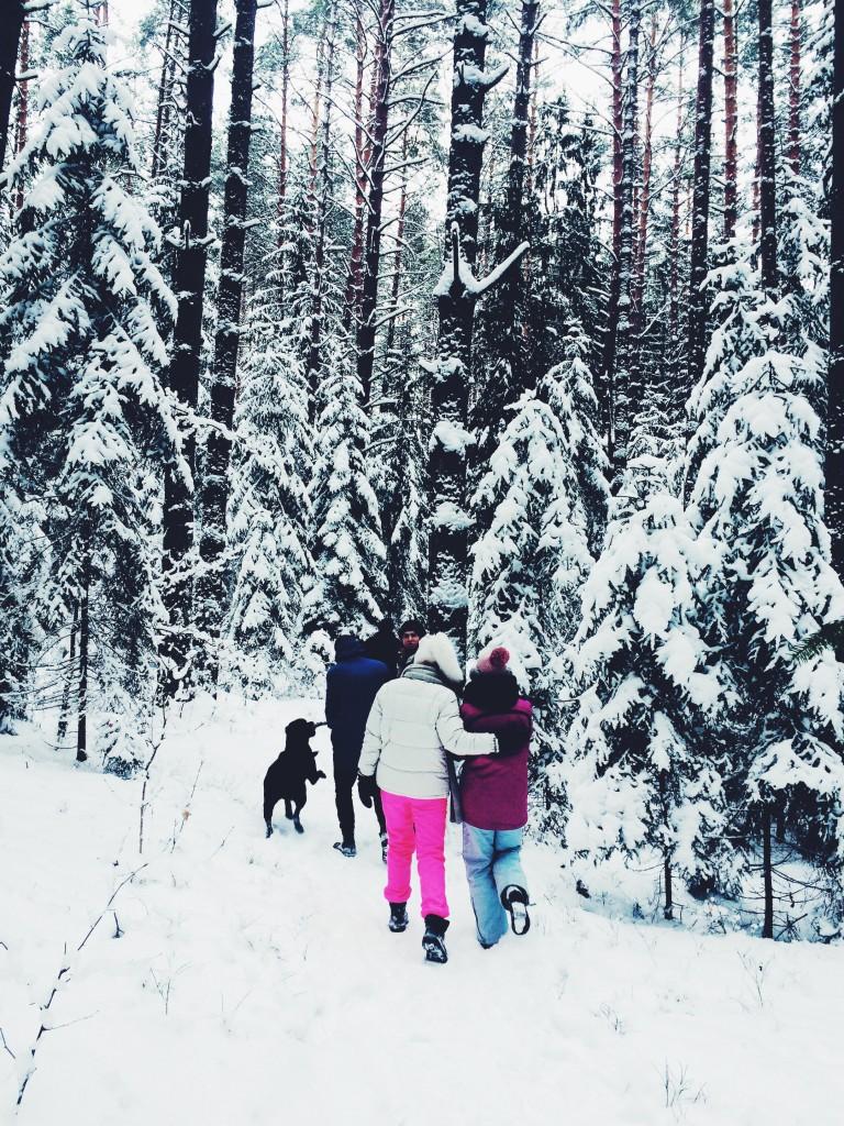 Dervynas žiema