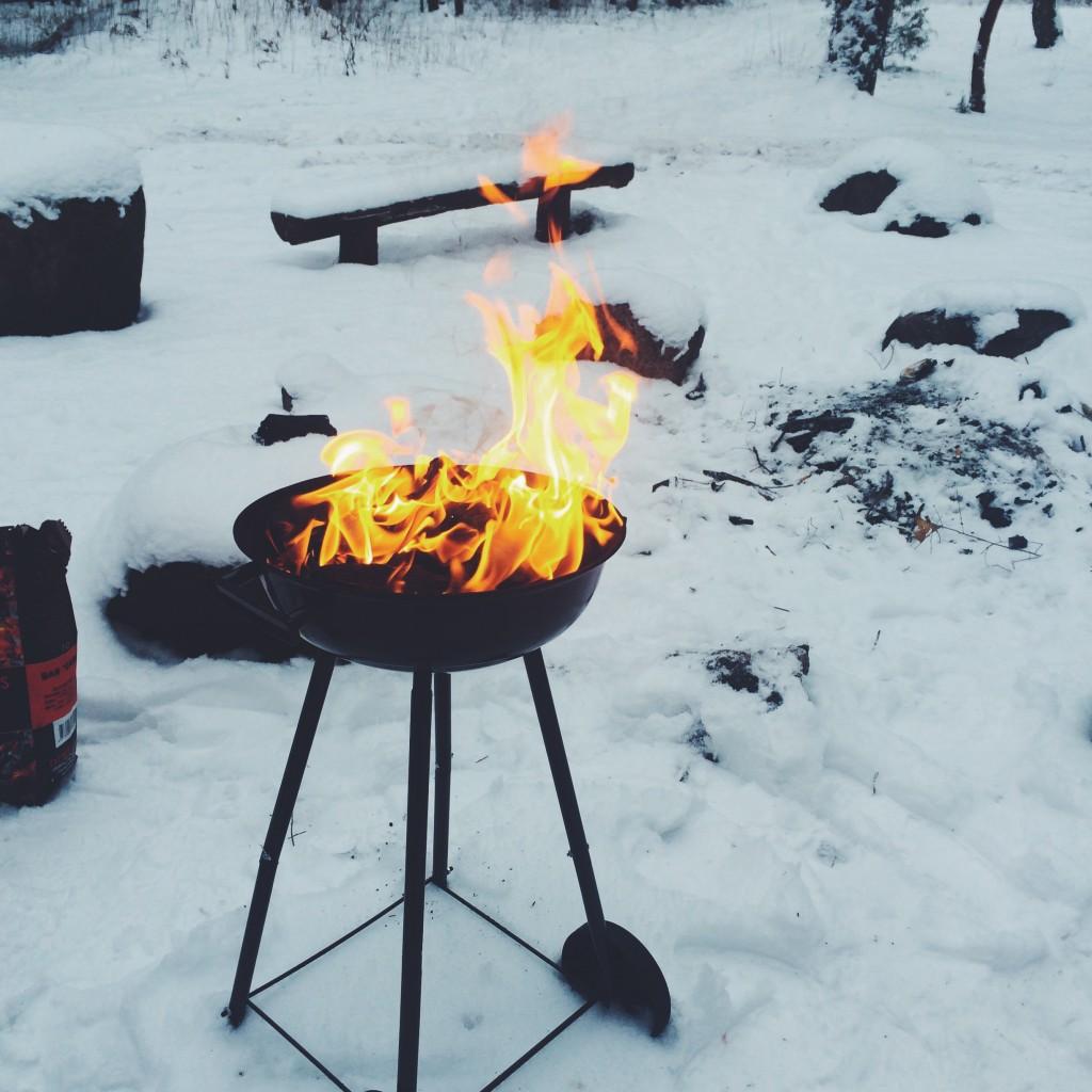 Dervynas žiema gamta