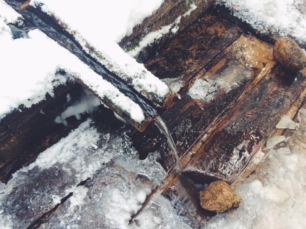 Dervynas žiema miškas gamta