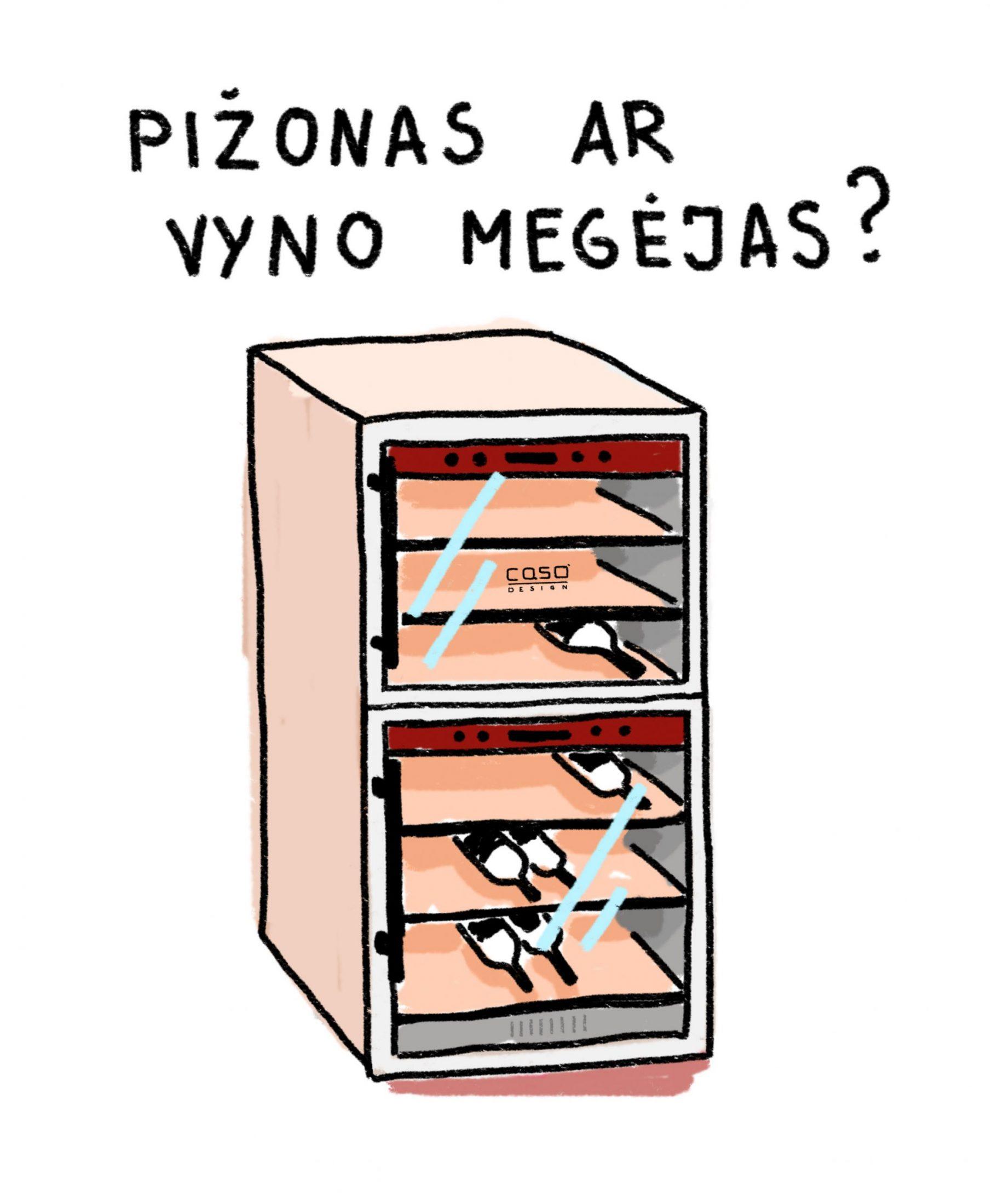 Vyno šaldytuvas CASO